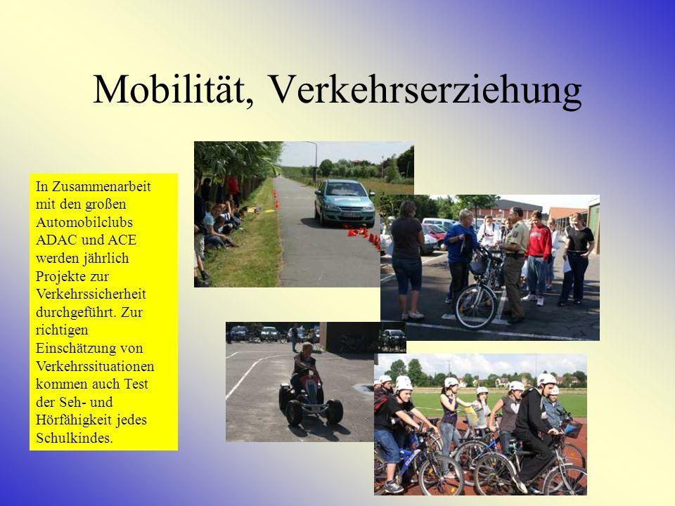 Schiprojekt Bis zu 45 Schulkinder der Klassen 5-10 können jährlich am Schiprojekt in den österreichischen Alpen teilnehmen.