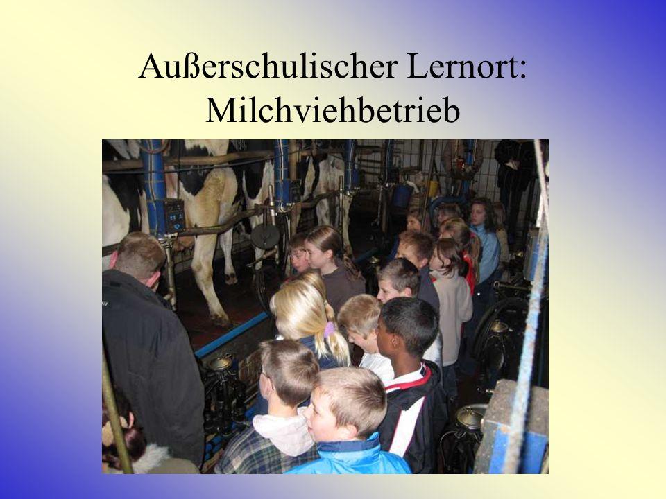 Außerschulischer Lernort Schwedenspeicher Museum Im Rahmen des Comenius Projektes hat die 9.