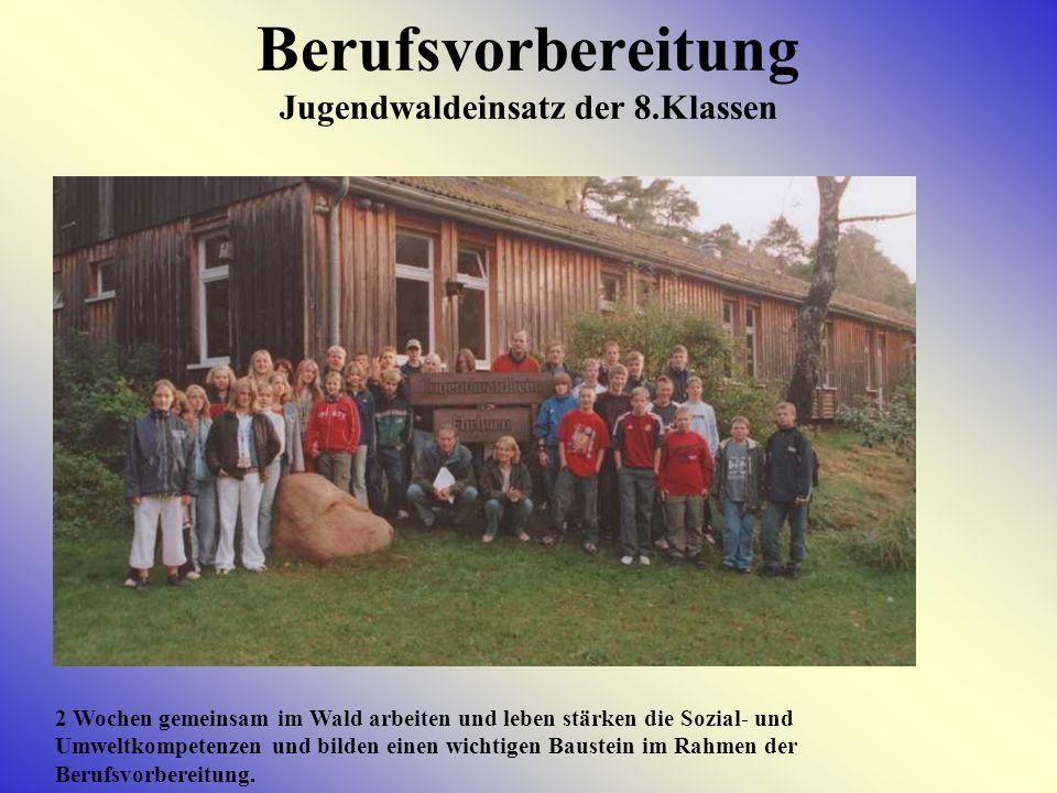 BERUFSVORBEREITUNG Zusammenarbeit mit Berufsbildenden Schulen Schülerinnen und Schüler der HRS Kehdingen nutzen regelmäßig die Schnupperangebote der Berufsschulen Stade und Cadenberge