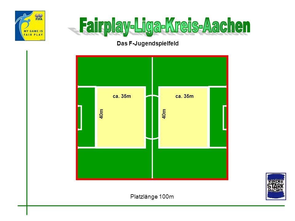 Das F-Jugendspielfeld Platzlänge 100m ca. 35m 40m ca. 35m 40m
