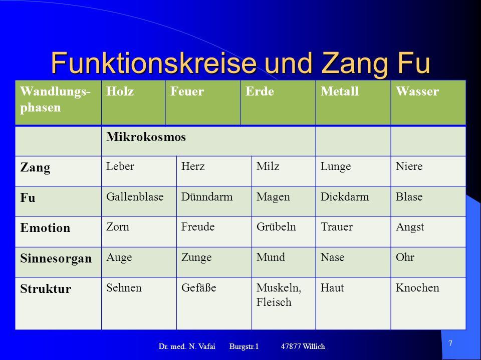 Funktionskreise und Zang Fu Dr.med. N.