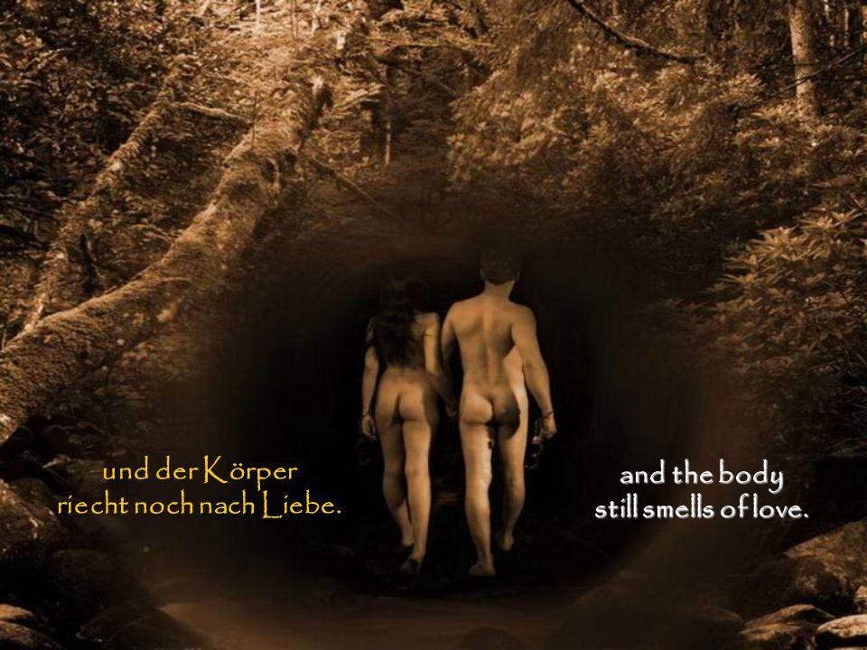 und der Körper riecht noch nach Liebe. and the body still smells of love.