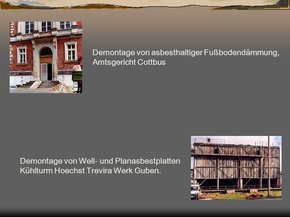 Demontage von asbesthaltiger Fußbodendämmung, Amtsgericht Cottbus Demontage von Well- und Planasbestplatten Kühlturm Hoechst Trevira Werk Guben.