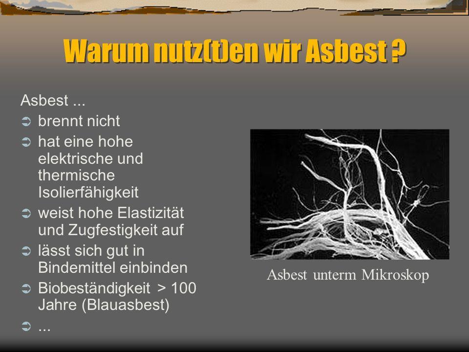 Warum nutz(t)en wir Asbest ? Asbest... brennt nicht hat eine hohe elektrische und thermische Isolierfähigkeit weist hohe Elastizität und Zugfestigkeit
