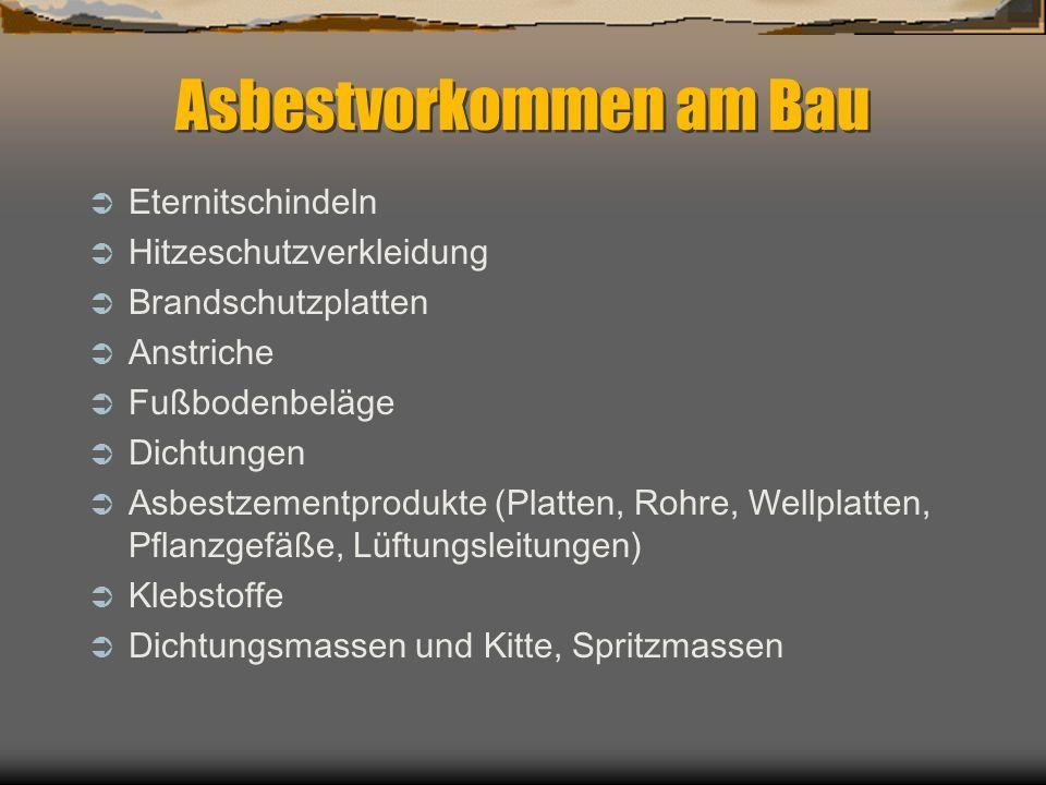 Asbestvorkommen am Bau Eternitschindeln Hitzeschutzverkleidung Brandschutzplatten Anstriche Fußbodenbeläge Dichtungen Asbestzementprodukte (Platten, R