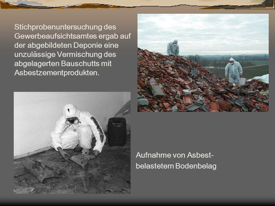Aufnahme von Asbest- belastetem Bodenbelag Stichprobenuntersuchung des Gewerbeaufsichtsamtes ergab auf der abgebildeten Deponie eine unzulässige Vermi