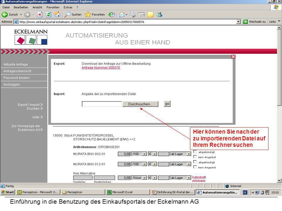Einführung in die Benutzung des Einkaufsportals der Eckelmann AG Hier können Sie nach der zu importierenden Datei auf Ihrem Rechner suchen