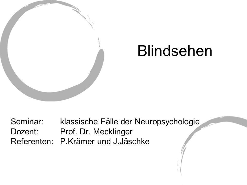 Blindsehen Seminar: klassische Fälle der Neuropsychologie Dozent: Prof. Dr. Mecklinger Referenten: P.Krämer und J.Jäschke
