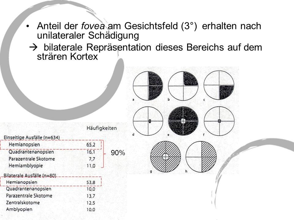 Anteil der fovea am Gesichtsfeld (3°) erhalten nach unilateraler Schädigung bilaterale Repräsentation dieses Bereichs auf dem strären Kortex 90%