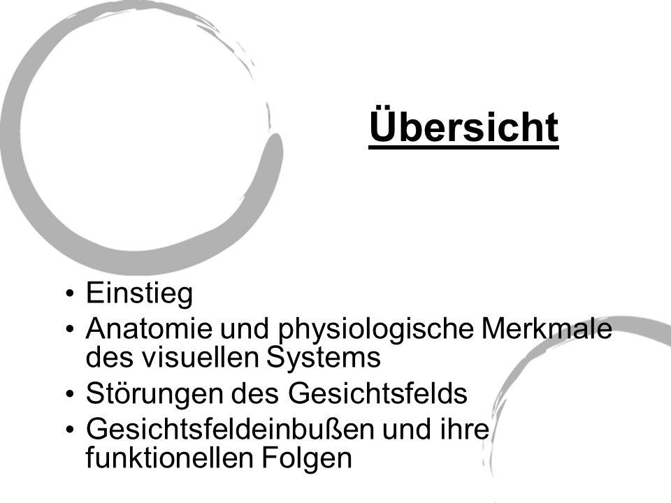 Übersicht Einstieg Anatomie und physiologische Merkmale des visuellen Systems Störungen des Gesichtsfelds Gesichtsfeldeinbußen und ihre funktionellen