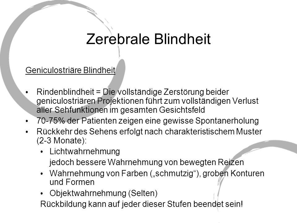 Zerebrale Blindheit Geniculostriäre Blindheit Rindenblindheit = Die vollständige Zerstörung beider geniculostriären Projektionen führt zum vollständig