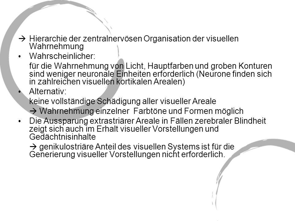Hierarchie der zentralnervösen Organisation der visuellen Wahrnehmung Wahrscheinlicher: für die Wahrnehmung von Licht, Hauptfarben und groben Konturen
