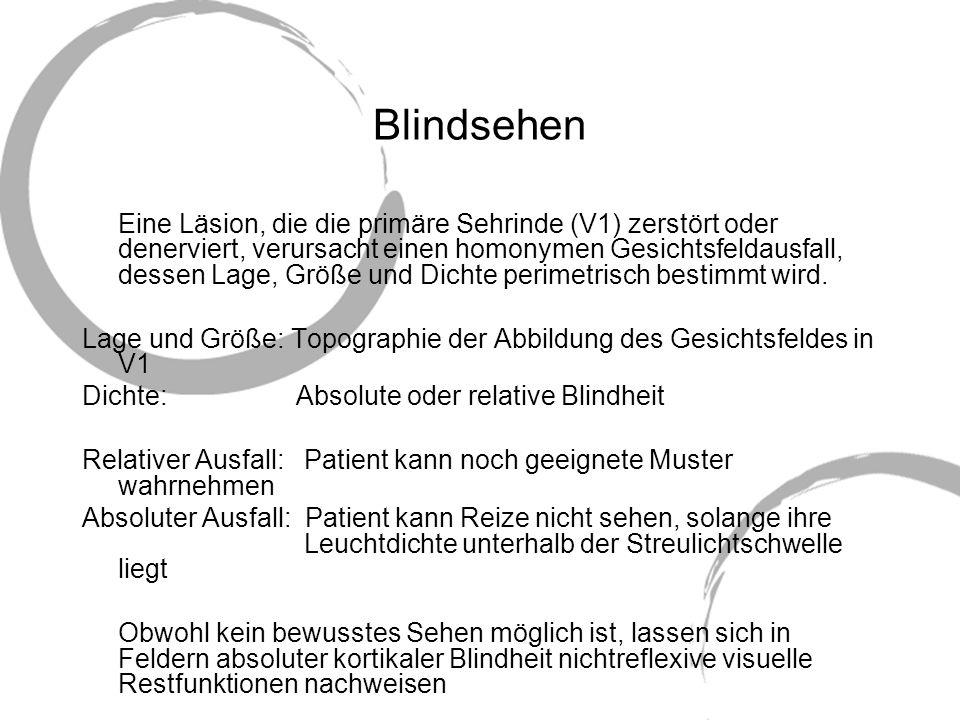 Blindsehen Eine Läsion, die die primäre Sehrinde (V1) zerstört oder denerviert, verursacht einen homonymen Gesichtsfeldausfall, dessen Lage, Größe und