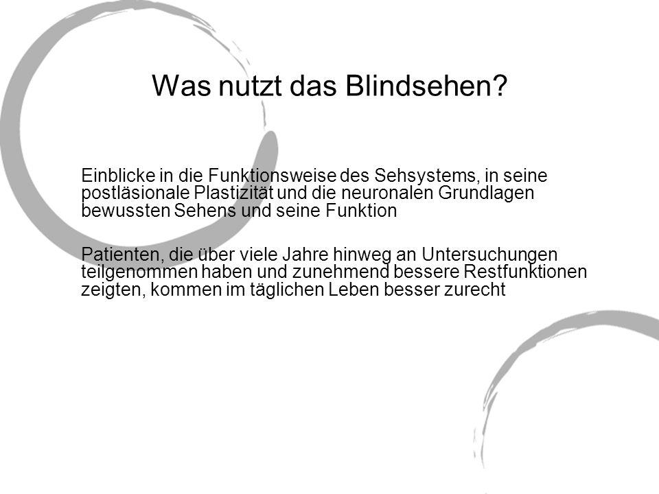 Was nutzt das Blindsehen? Einblicke in die Funktionsweise des Sehsystems, in seine postläsionale Plastizität und die neuronalen Grundlagen bewussten S