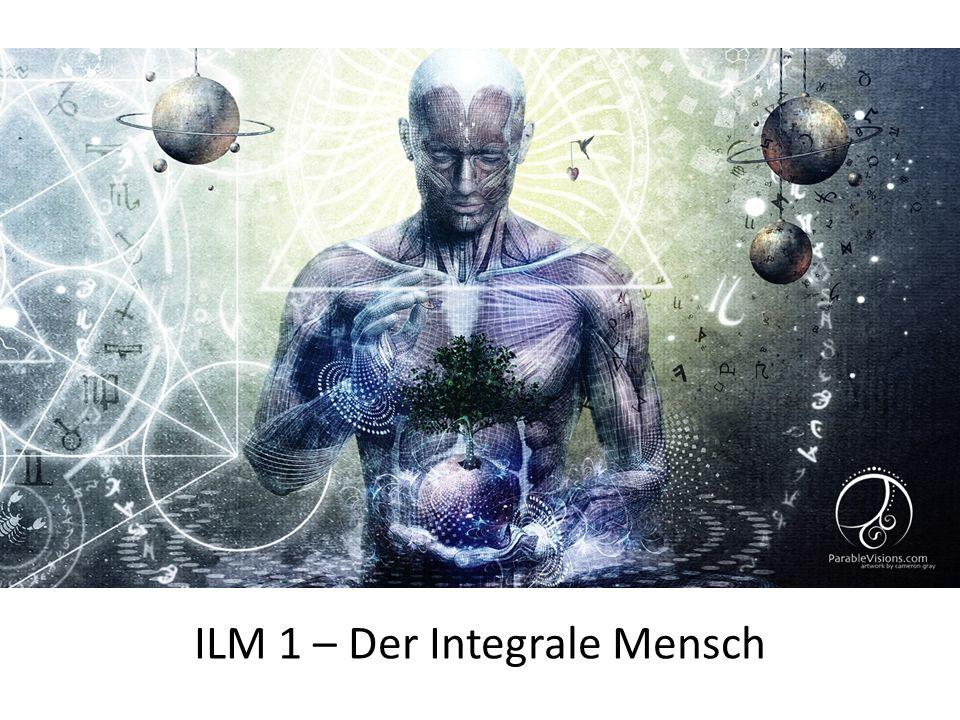 Integral, integral, integral... Hintergrund... Grundgedanke Warum so wichtig und hilfreich?