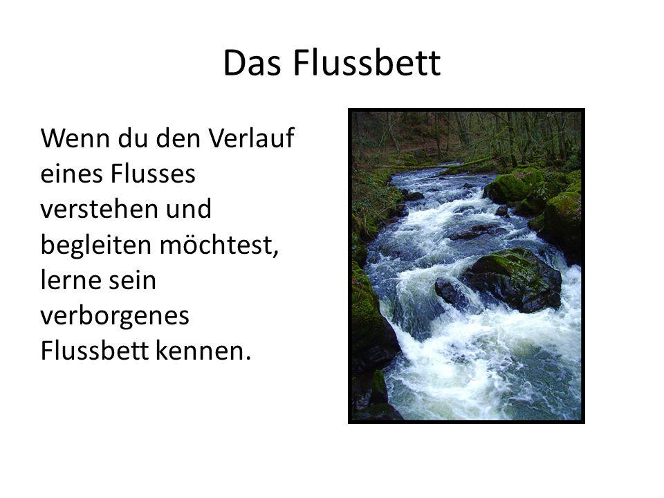 Das Flussbett Wenn du den Verlauf eines Flusses verstehen und begleiten möchtest, lerne sein verborgenes Flussbett kennen.