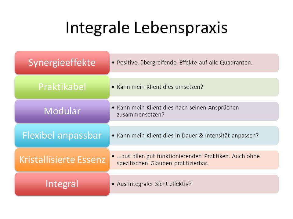 Integrale Lebenspraxis Positive, übergreifende Effekte auf alle Quadranten.