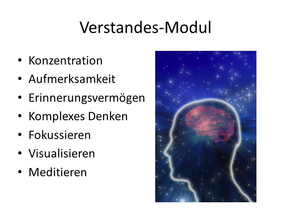 Verstandes-Modul Konzentration Aufmerksamkeit Erinnerungsvermögen Komplexes Denken Fokussieren Visualisieren Meditieren
