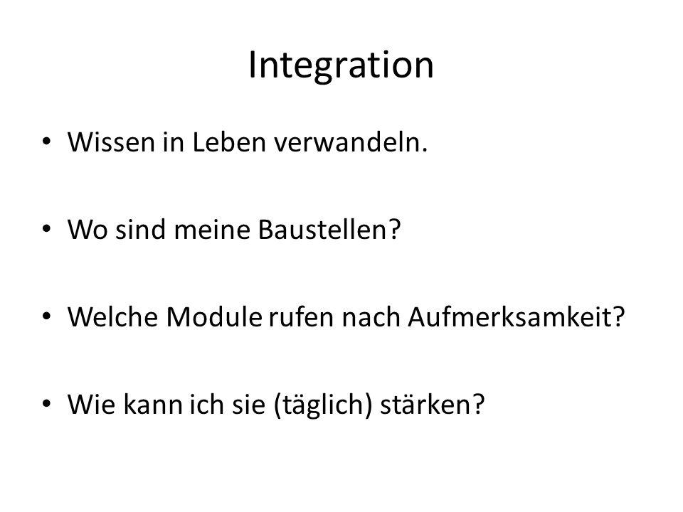 Integration Wissen in Leben verwandeln.Wo sind meine Baustellen.