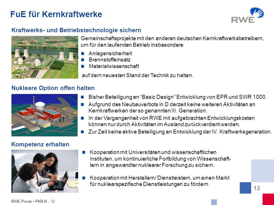 12 RWE Power PKR-N - 12 FuE für Kernkraftwerke Kraftwerks- und Betriebstechnologie sichern Kompetenz erhalten Nukleare Option offen halten Gemeinschaf