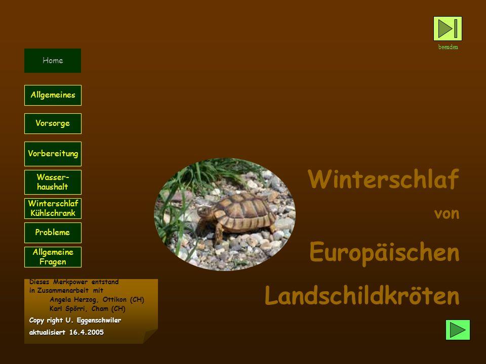 Winterschlaf von Europäischen Landschildkröten beenden Home Probleme Vorsorge Allgemeines Vorbereitung Wasser- haushalt Winterschlaf Kühlschrank Diese