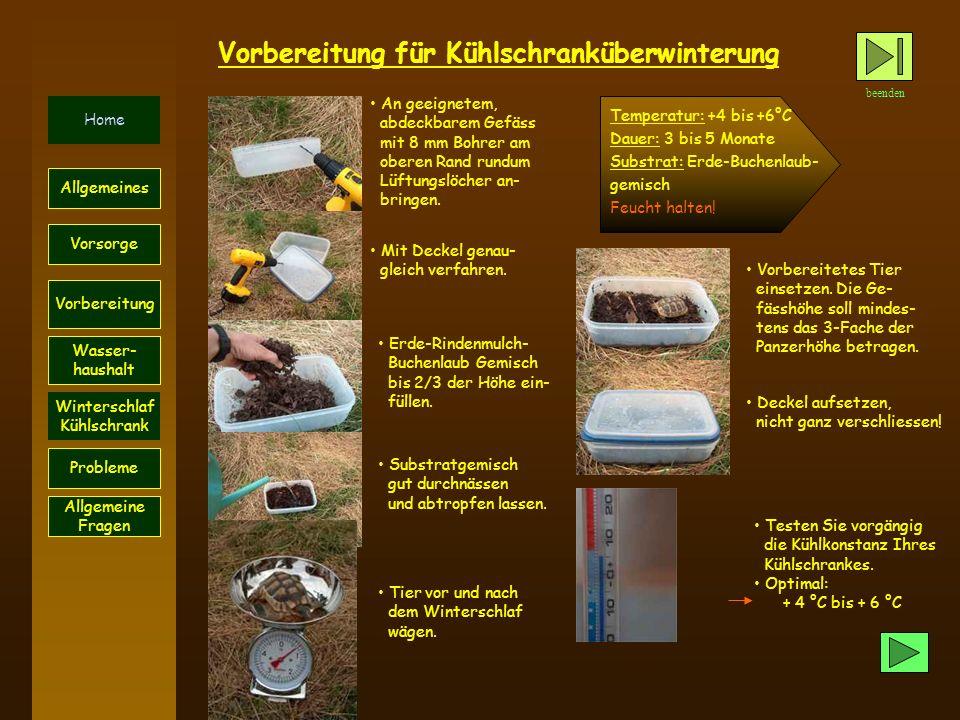 beenden Home Probleme Vorsorge Allgemeines Vorbereitung Wasser- haushalt Winterschlaf Kühlschrank Allgemeine Fragen Vorbereitung für Kühlschranküberwi