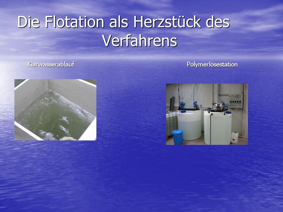 Die Flotation als Herzstück des Verfahrens Klarwasserablauf Polymerlösestation