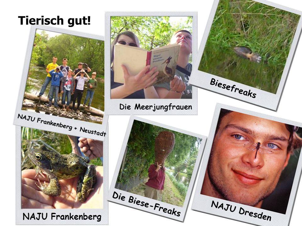 NAJU Frankenberg NAJU Frankenberg + Neustadt Tierisch gut.