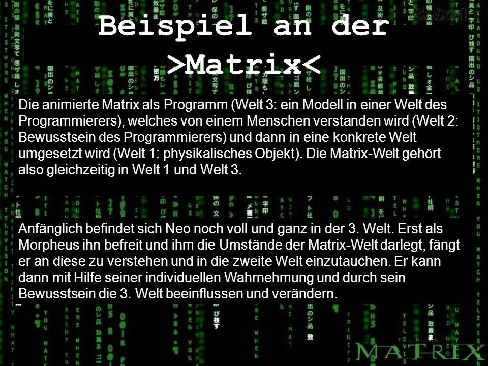 Beispiel an der >Matrix< Die animierte Matrix als Programm (Welt 3: ein Modell in einer Welt des Programmierers), welches von einem Menschen verstande