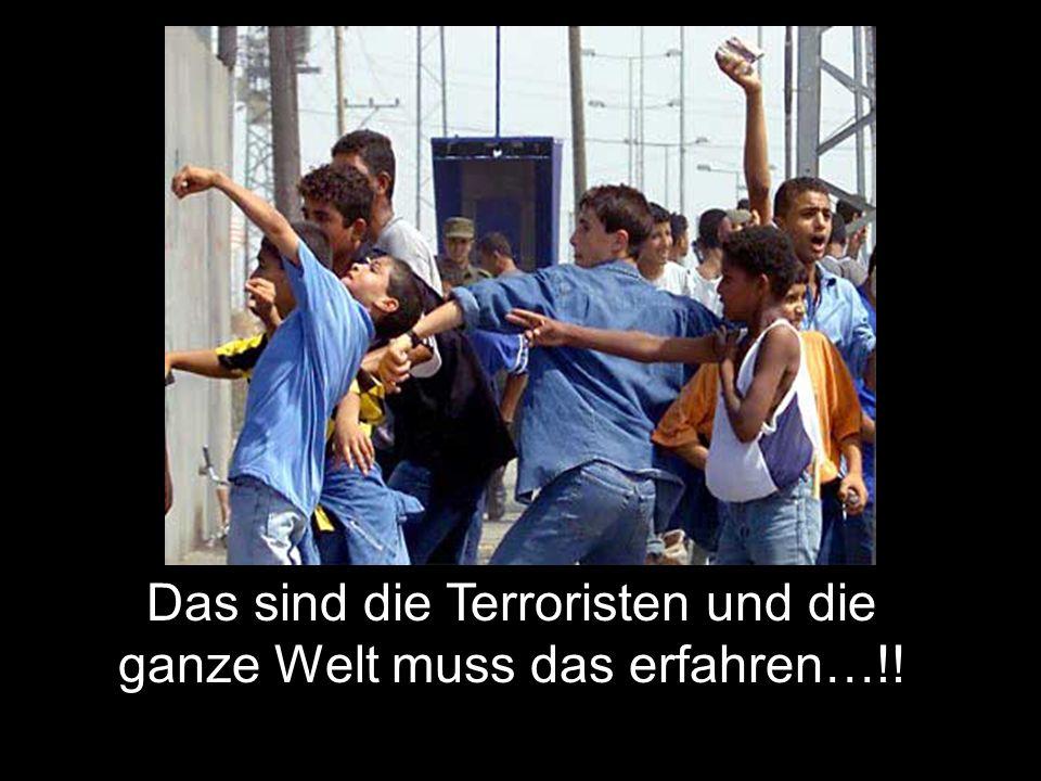 Erschiesst die Terroristen…