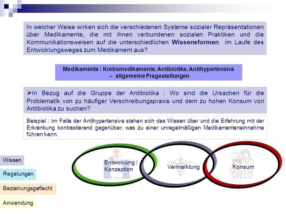 Anwendung Beziehungsgeflecht Regelungen Wissen Entwicklung / Konzeption VermarktungKonsum Niveau 1