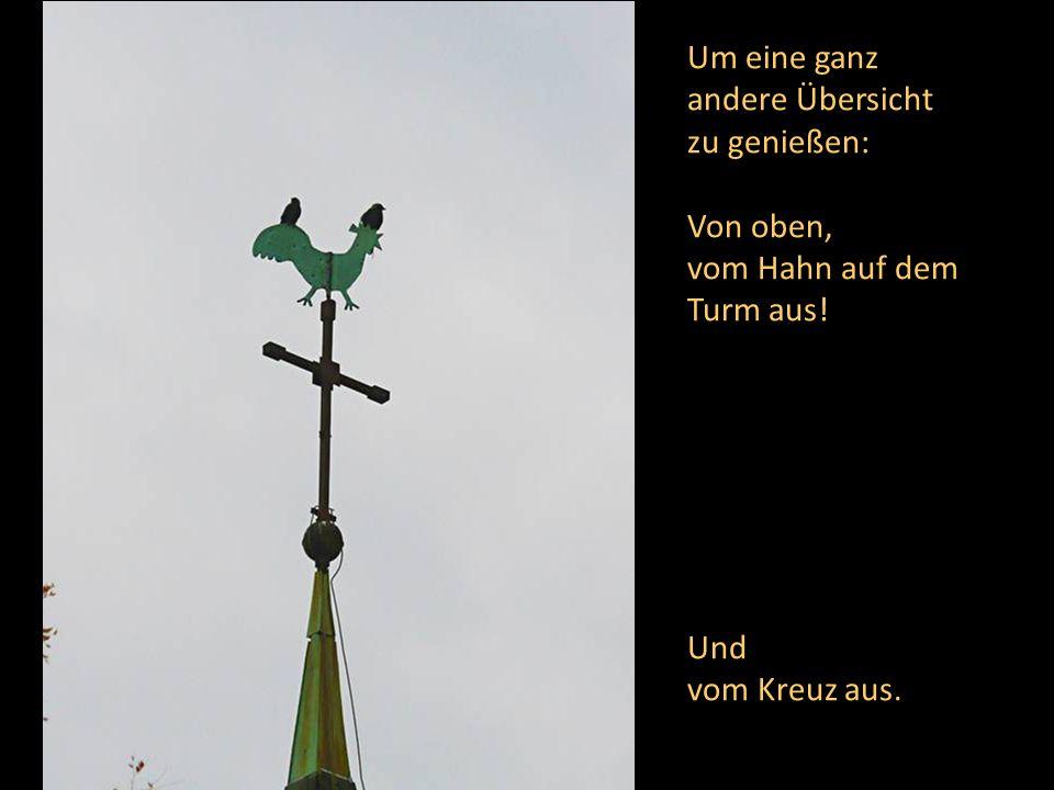 Um eine ganz andere Übersicht zu genießen: Von oben, vom Hahn auf dem Turm aus! Und vom Kreuz aus.