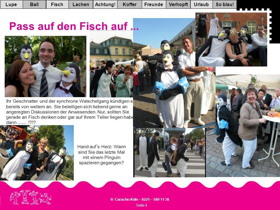 Seite 8 © Caracho-Köln – 0221 – 580 11 38 VerhopftFreundeKofferAchtung!LachenFischUrlaubBallSo blau!Lupe Hand auf´s Herz: Wann sind Sie das letzte Mal mit einem Pinguin spazieren gegangen.