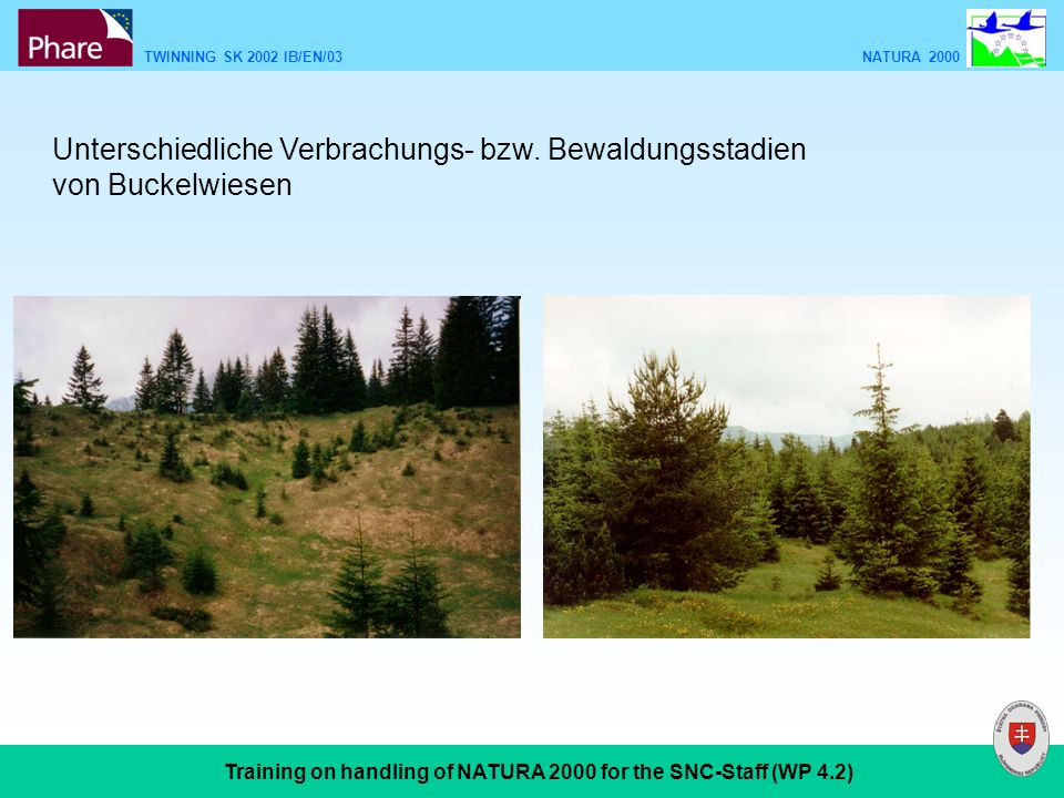 TWINNING SK 2002 IB/EN/03 NATURA 2000 Training on handling of NATURA 2000 for the SNC-Staff (WP 4.2) Unterschiedliche Verbrachungs- bzw.