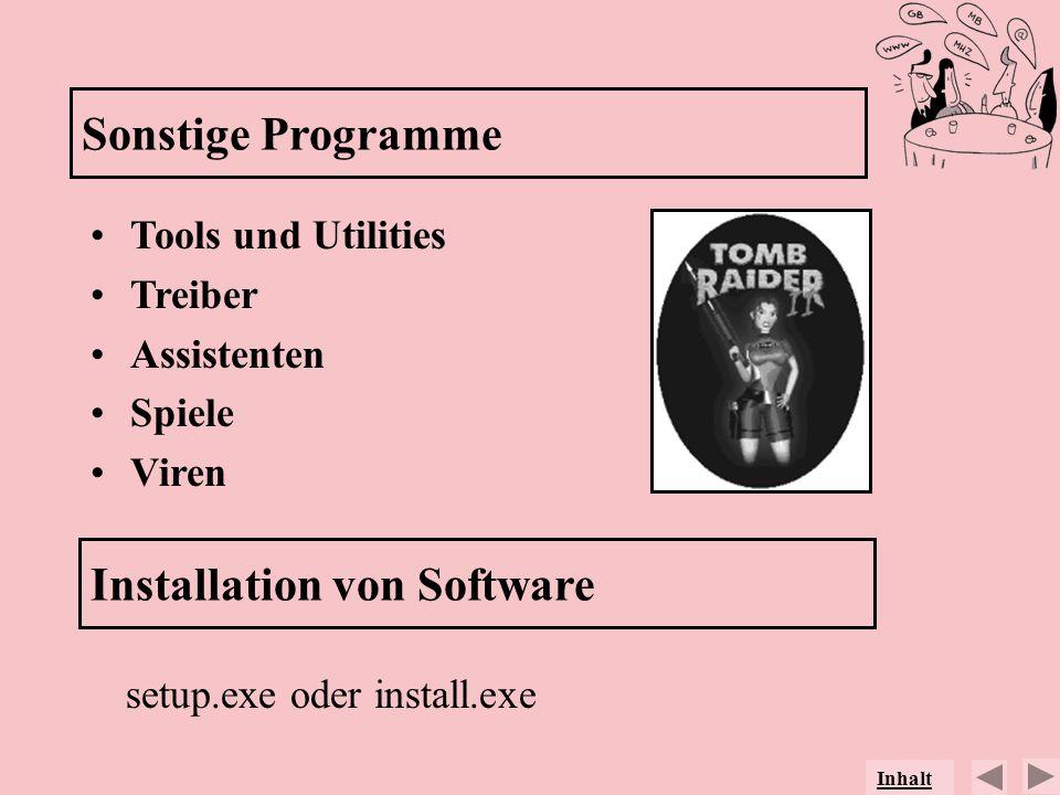 Sonstige Programme Tools und Utilities Treiber Assistenten Spiele Viren Installation von Software setup.exe oder install.exe Inhalt