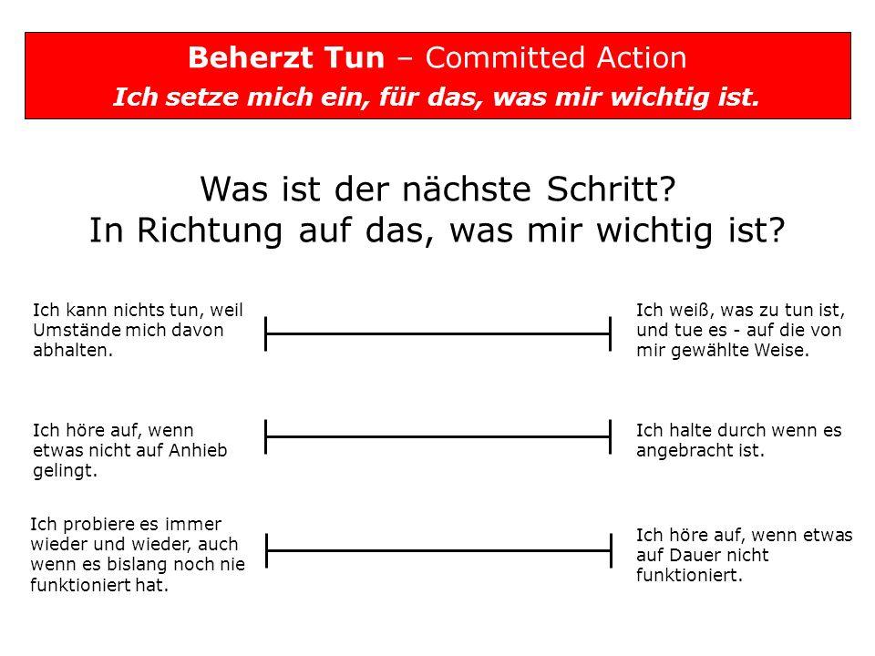 Beherzt Tun – Committed Action Ich setze mich ein, für das, was mir wichtig ist. Was ist der nächste Schritt? In Richtung auf das, was mir wichtig ist