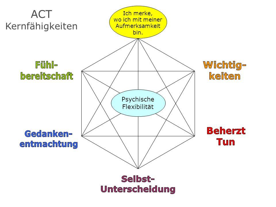 ACT Kernfähigkeiten Ich merke, wo ich mit meiner Aufmerksamkeit bin. Psychische Flexibilität