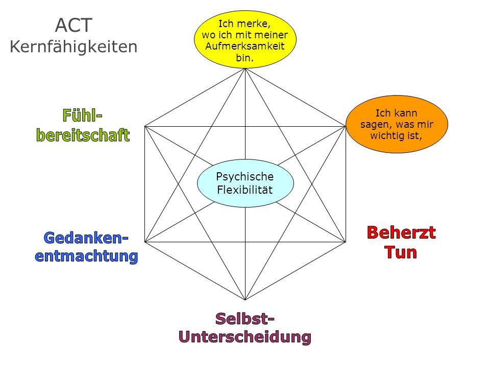 ACT Kernfähigkeiten Ich kann sagen, was mir wichtig ist, Ich merke, wo ich mit meiner Aufmerksamkeit bin. Psychische Flexibilität