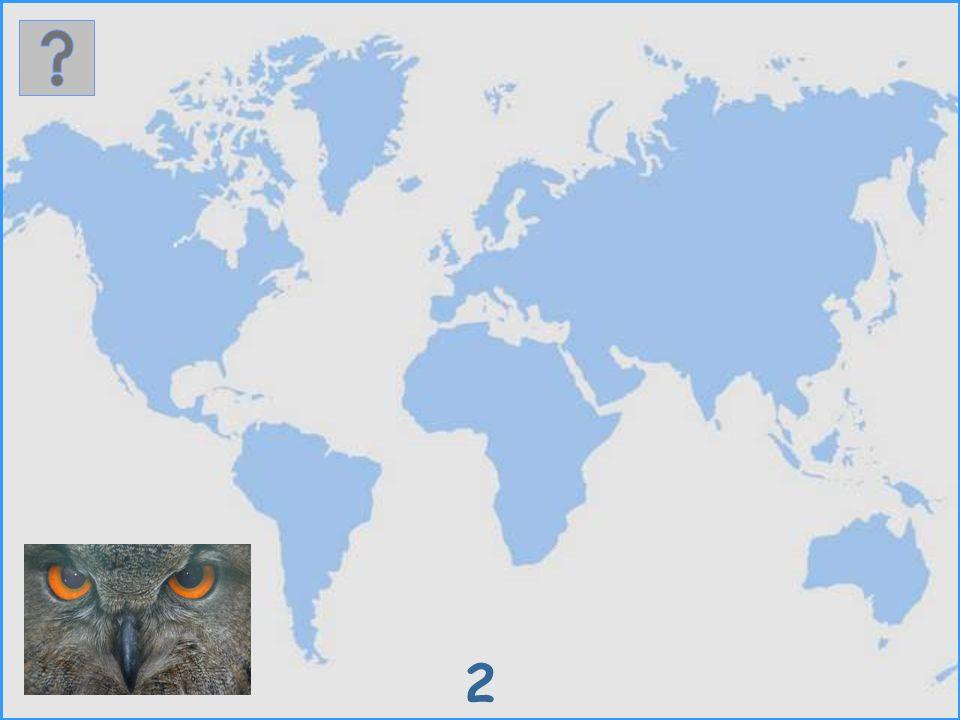 Wo leben diese Vögel.Es werden 30 verschiedene Vogelarten als Bild vorgestellt.