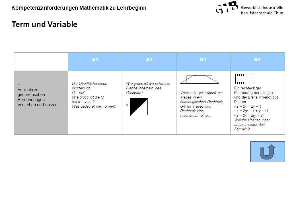 Kompetenzanforderungen Mathematik zu Lehrbeginn Term und Variable A1A2B1B2 4. Formeln zu geometrischen Berechnungen verstehen und nutzen Die Oberfläch