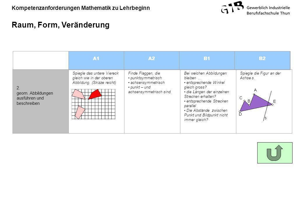 Kompetenzanforderungen Mathematik zu Lehrbeginn Raum, Form, Veränderung A1A2B1B2 2. geom. Abbildungen ausführen und beschreiben Spiegle das untere Vie