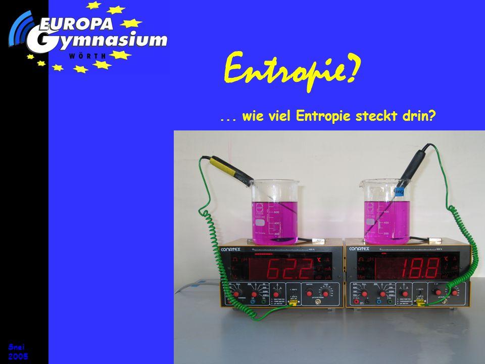 Snei 2005 Entropie und Energie