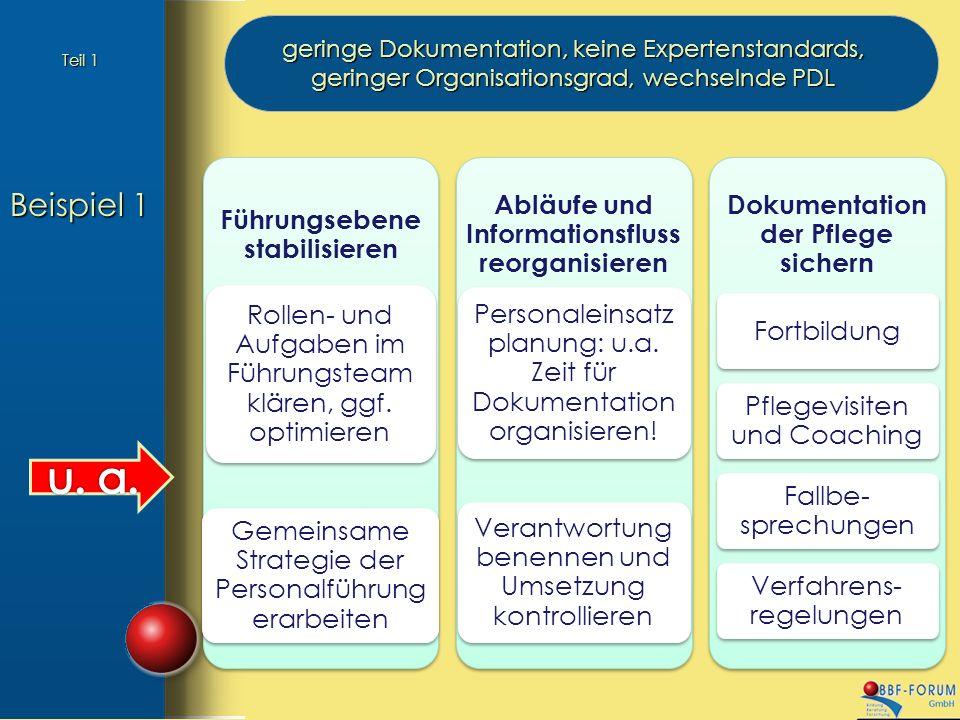 Beispiel 1 geringe Dokumentation, keine Expertenstandards, geringer Organisationsgrad, wechselnde PDL Führungsebene stabilisieren Rollen- und Aufgaben im Führungsteam klären, ggf.