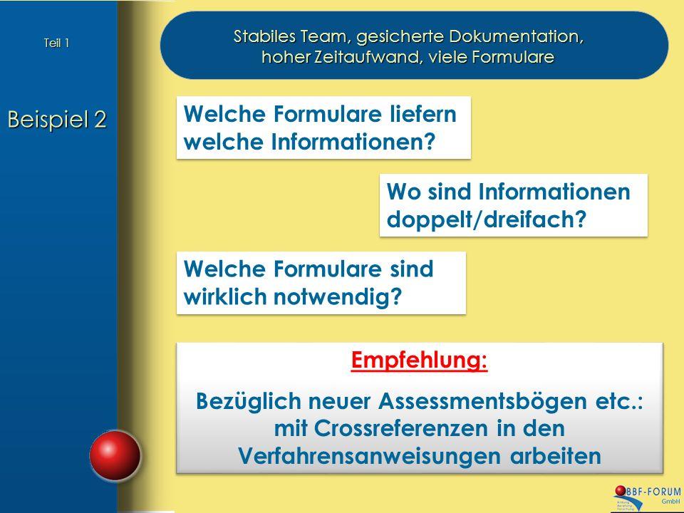 Beispiel 2 Stabiles Team, gesicherte Dokumentation, hoher Zeitaufwand, viele Formulare Welche Formulare liefern welche Informationen.