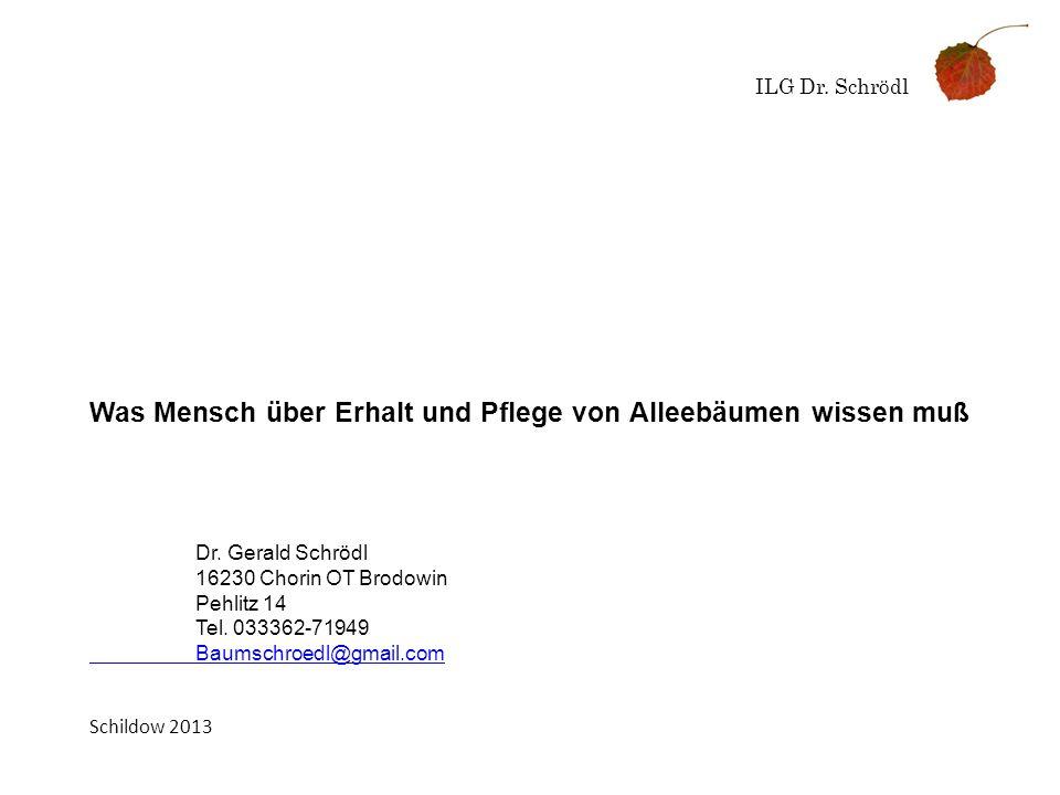 ILG Dr. Schrödl Was Mensch über Erhalt und Pflege von Alleebäumen wissen muß Dr. Gerald Schrödl 16230 Chorin OT Brodowin Pehlitz 14 Tel. 033362-71949