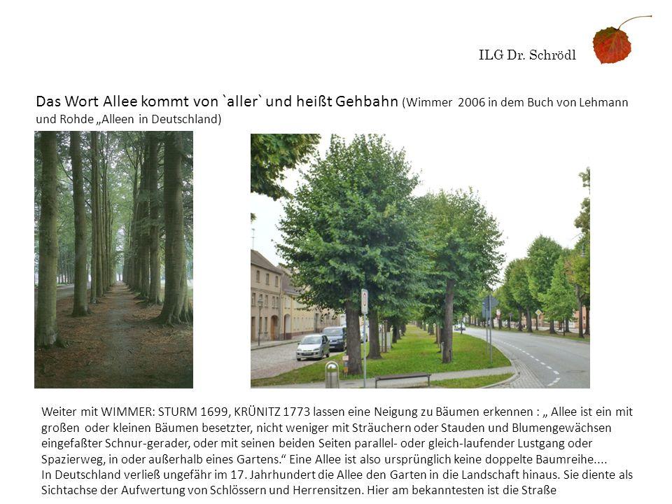ILG Dr. Schrödl Das Wort Allee kommt von `aller` und heißt Gehbahn (Wimmer 2006 in dem Buch von Lehmann und Rohde Alleen in Deutschland) Weiter mit WI
