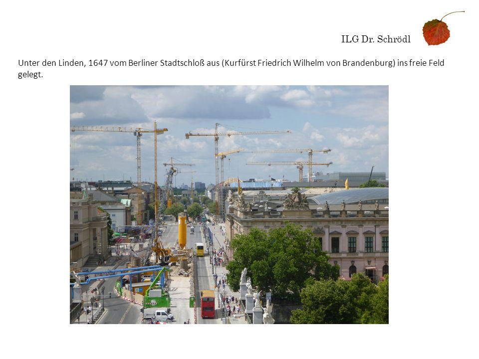 ILG Dr. Schrödl Unter den Linden, 1647 vom Berliner Stadtschloß aus (Kurfürst Friedrich Wilhelm von Brandenburg) ins freie Feld gelegt.
