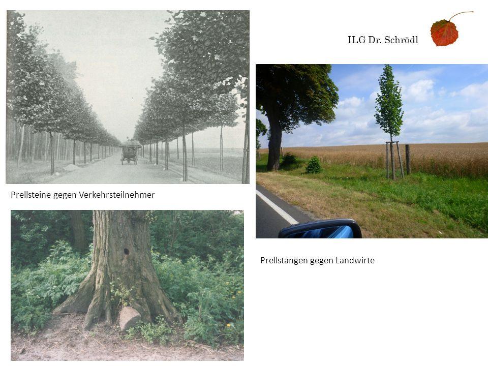 ILG Dr. Schrödl Prellsteine gegen Verkehrsteilnehmer Prellstangen gegen Landwirte