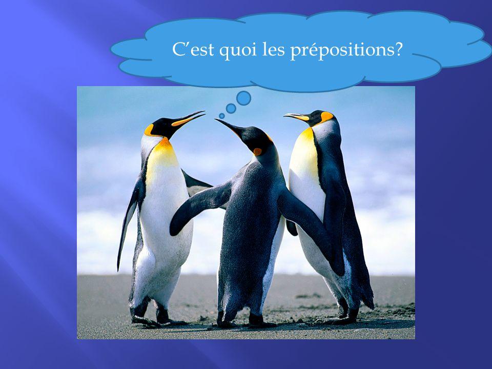 Die Präpositionen Les prépositions