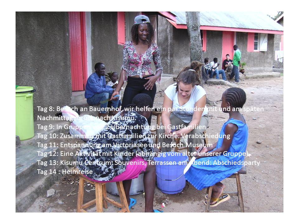 Tag 8: Besuch an Bauernhof, wir helfen ein par Stunden mit und am späten Nachmittag zurück nach Kisumu.